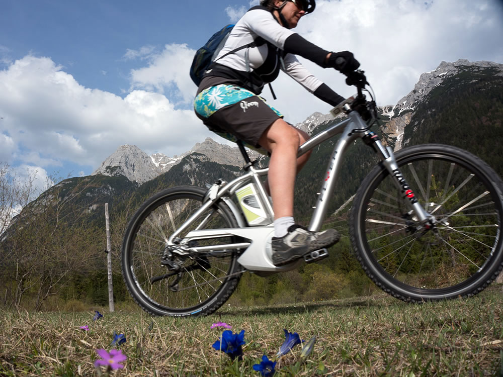 E-Bike und Enzian
