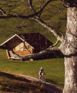 Herbst Biken in der Alpenwelt