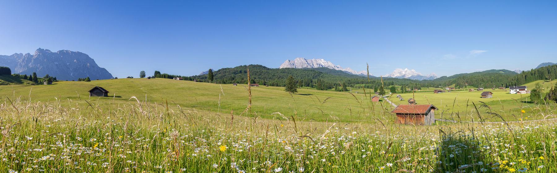 Panorama Bucklwiesen