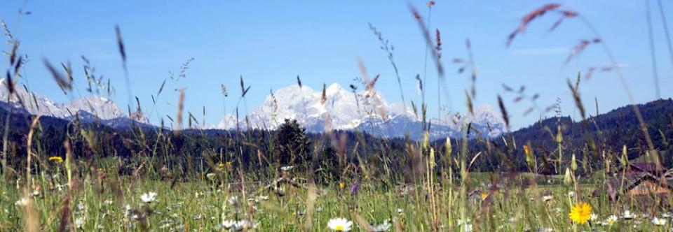 Bergsommer in der Alpenwelt